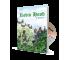Robin Hood | Book & CD